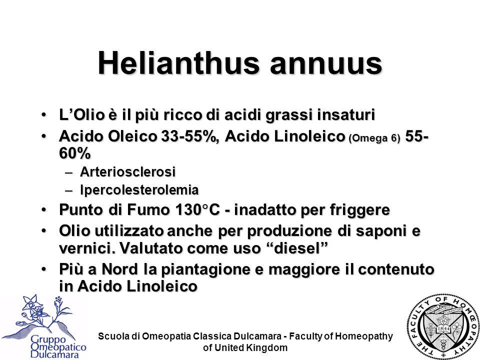 Scuola di Omeopatia Classica Dulcamara - Faculty of Homeopathy of United Kingdom Helianthus annuus LOlio è il più ricco di acidi grassi insaturiLOlio