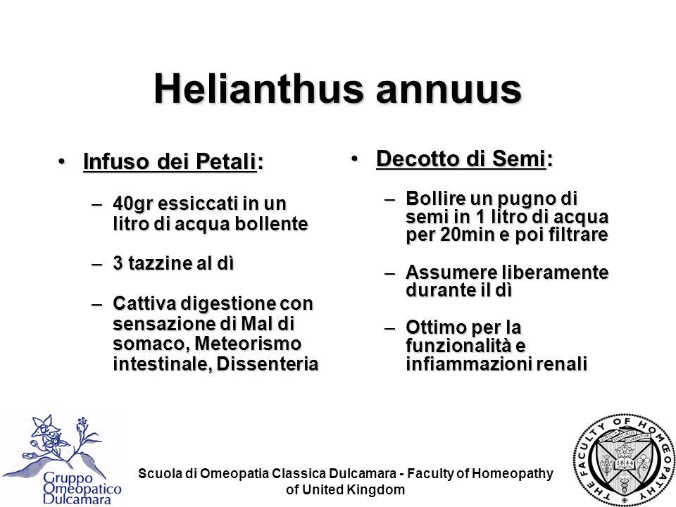 Scuola di Omeopatia Classica Dulcamara - Faculty of Homeopathy of United Kingdom Helianthus annuus Infuso dei Petali:Infuso dei Petali: –40gr essiccat