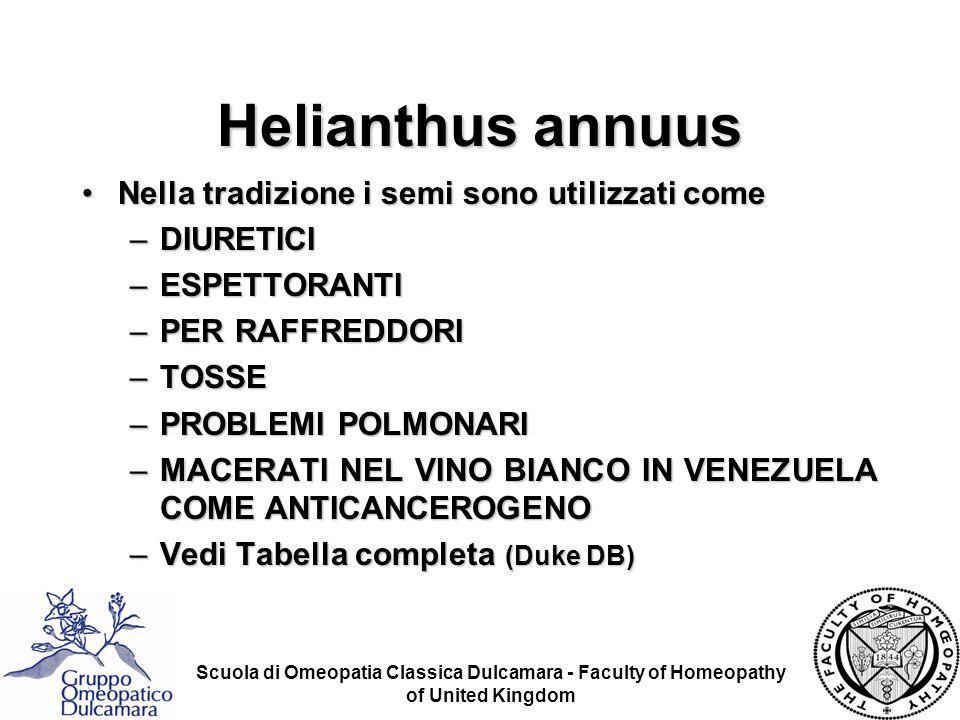 Scuola di Omeopatia Classica Dulcamara - Faculty of Homeopathy of United Kingdom Nella tradizione i semi sono utilizzati comeNella tradizione i semi s