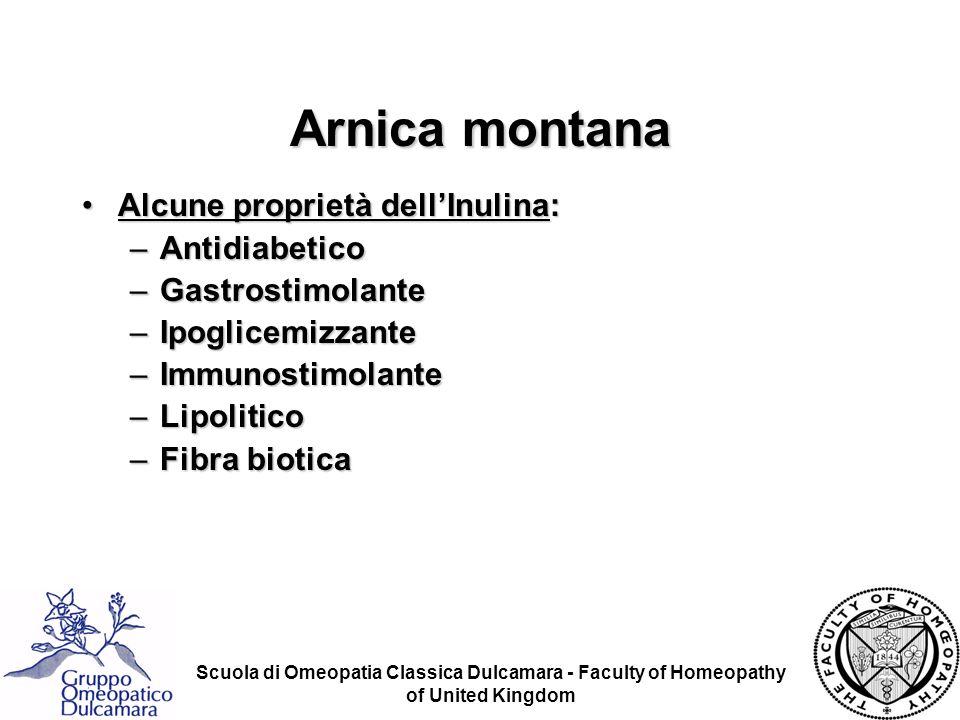 Scuola di Omeopatia Classica Dulcamara - Faculty of Homeopathy of United Kingdom Arnica montana Alcune proprietà dellInulina:Alcune proprietà dellInul