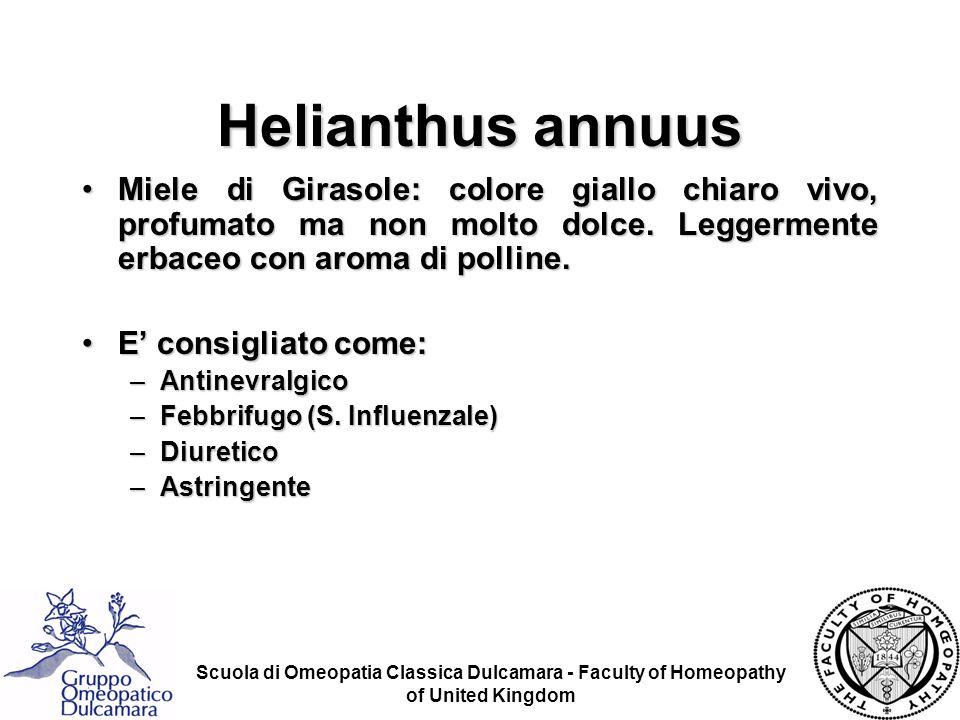 Scuola di Omeopatia Classica Dulcamara - Faculty of Homeopathy of United Kingdom Miele di Girasole: colore giallo chiaro vivo, profumato ma non molto