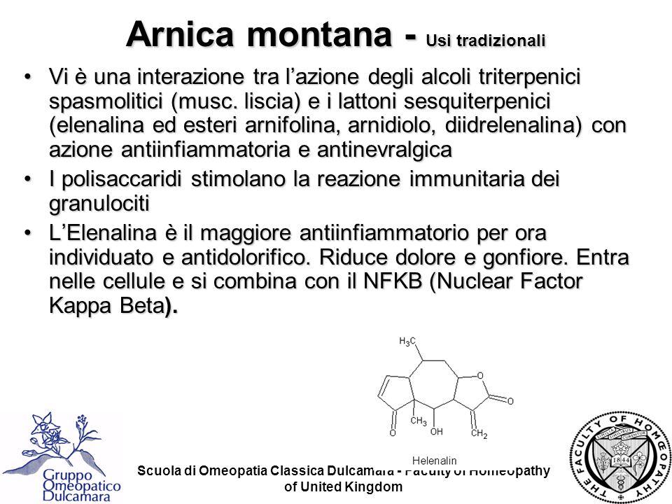 Scuola di Omeopatia Classica Dulcamara - Faculty of Homeopathy of United Kingdom Arnica montana - Usi tradizionali Vi è una interazione tra lazione de
