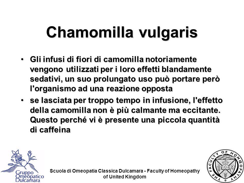 Scuola di Omeopatia Classica Dulcamara - Faculty of Homeopathy of United Kingdom Chamomilla vulgaris Gli infusi di fiori di camomilla notoriamente ven