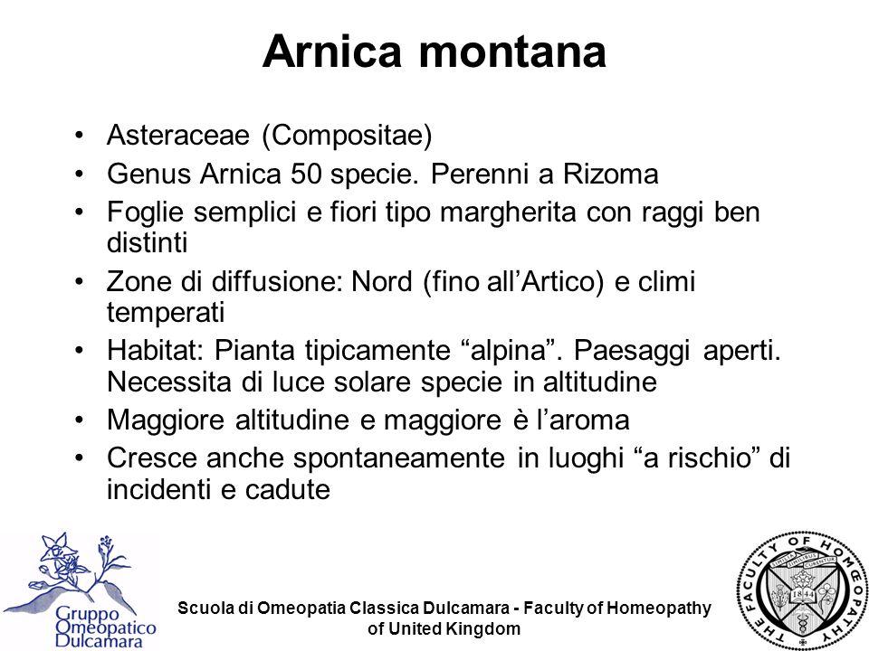 Scuola di Omeopatia Classica Dulcamara - Faculty of Homeopathy of United Kingdom GENERALI Contusioni.