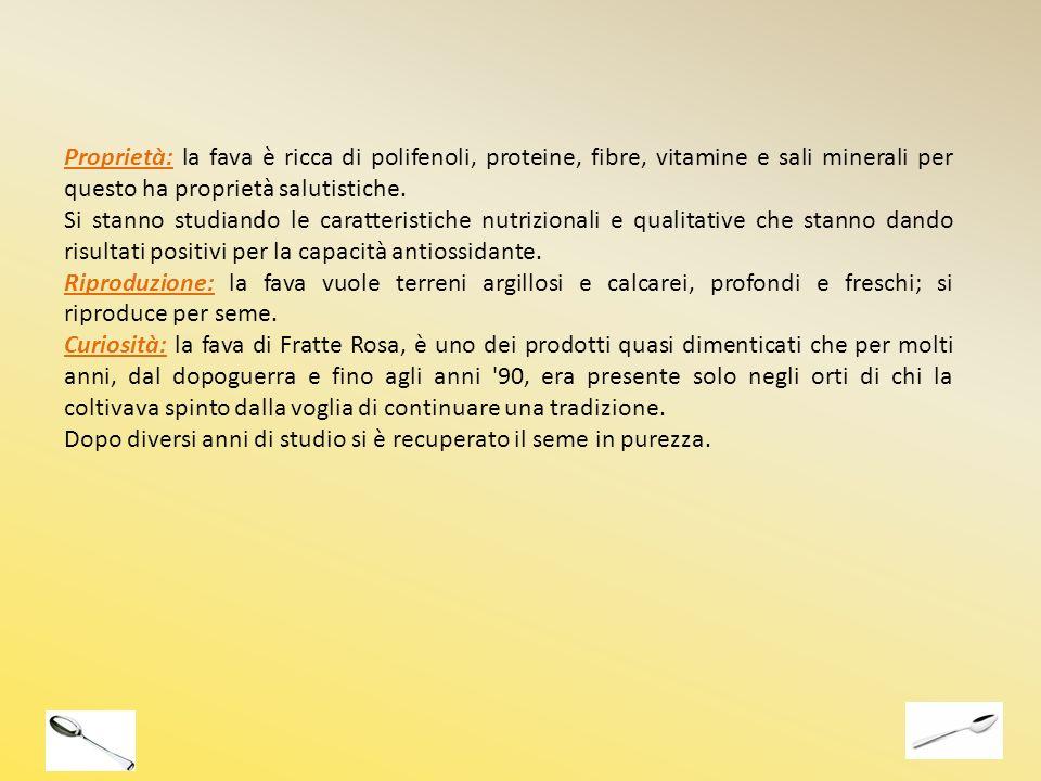 Proprietà: la fava è ricca di polifenoli, proteine, fibre, vitamine e sali minerali per questo ha proprietà salutistiche. Si stanno studiando le carat