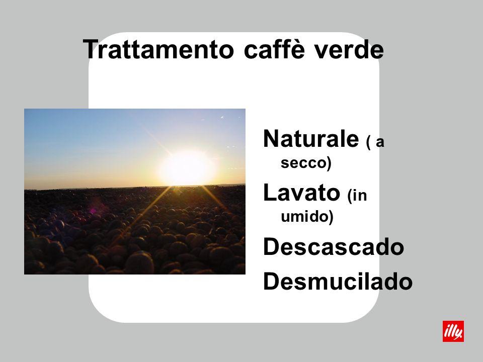Trattamento caffè verde Naturale ( a secco) Lavato (in umido) Descascado Desmucilado