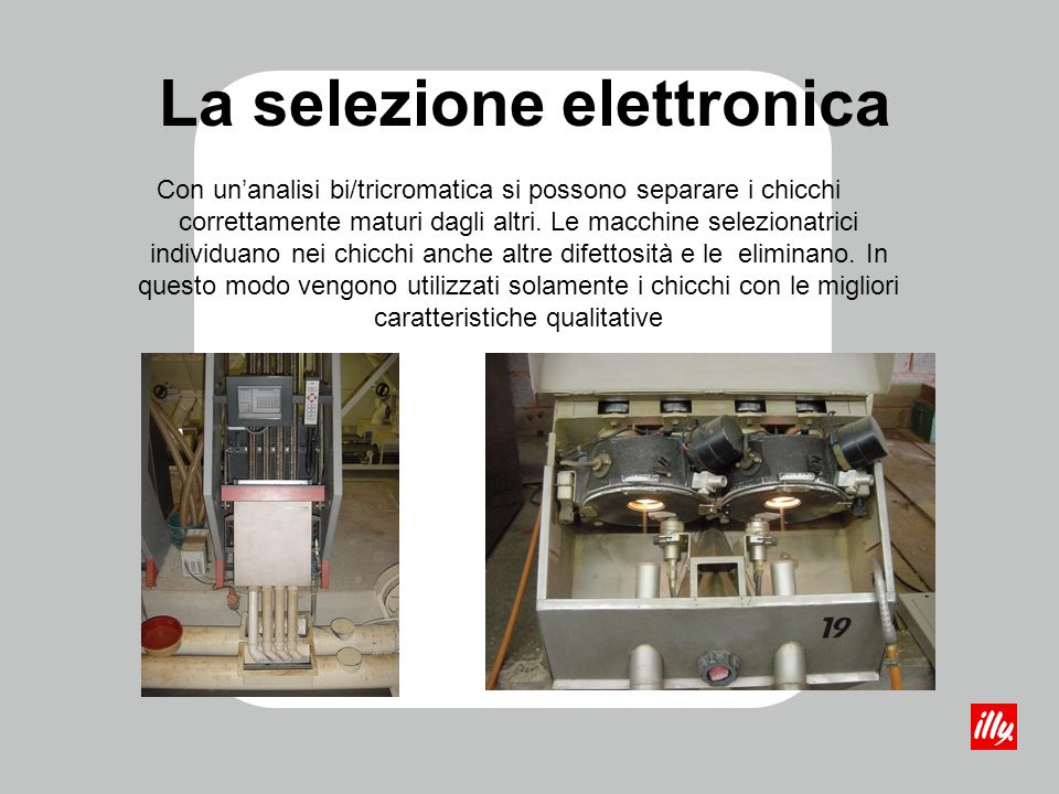 La selezione elettronica Con unanalisi bi/tricromatica si possono separare i chicchi correttamente maturi dagli altri. Le macchine selezionatrici indi