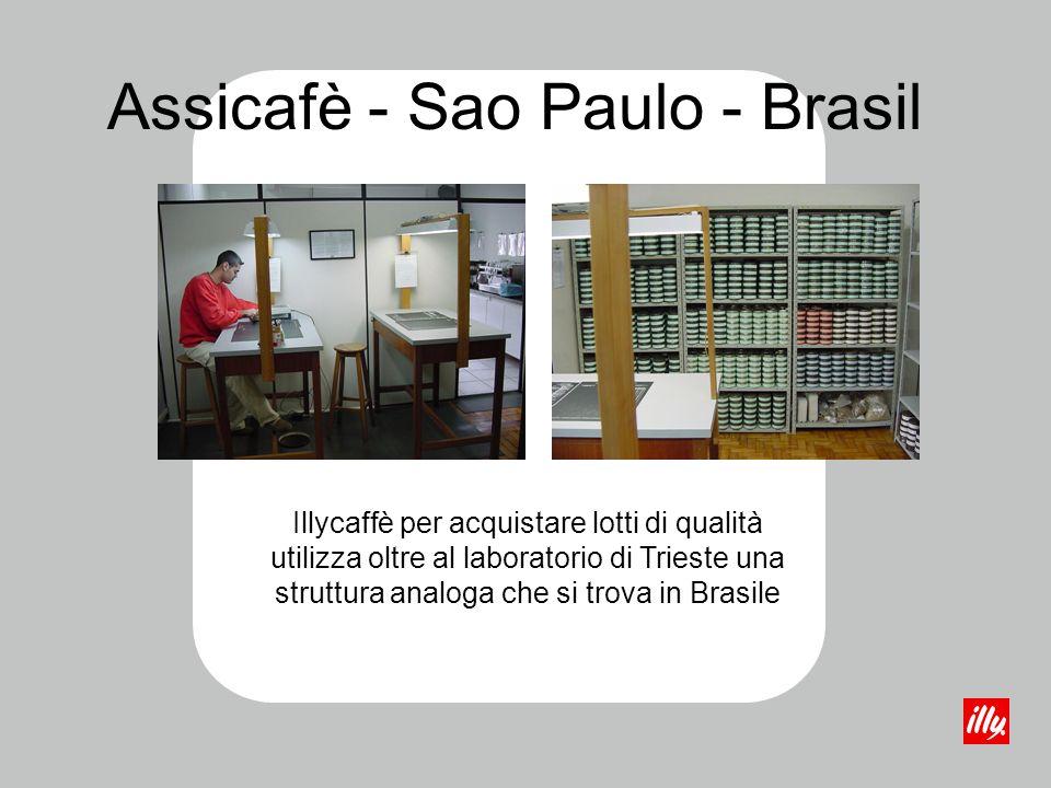 Illycaffè per acquistare lotti di qualità utilizza oltre al laboratorio di Trieste una struttura analoga che si trova in Brasile Assicafè - Sao Paulo