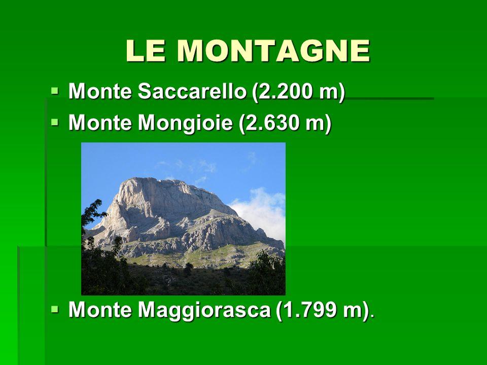LE MONTAGNE Monte Saccarello (2.200 m) Monte Saccarello (2.200 m) Monte Mongioie (2.630 m) Monte Mongioie (2.630 m) Monte Maggiorasca (1.799 m). Monte