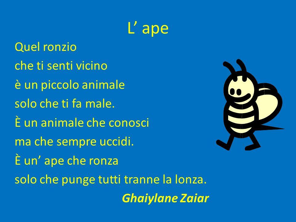 L ape Quel ronzio che ti senti vicino è un piccolo animale solo che ti fa male. È un animale che conosci ma che sempre uccidi. È un ape che ronza solo
