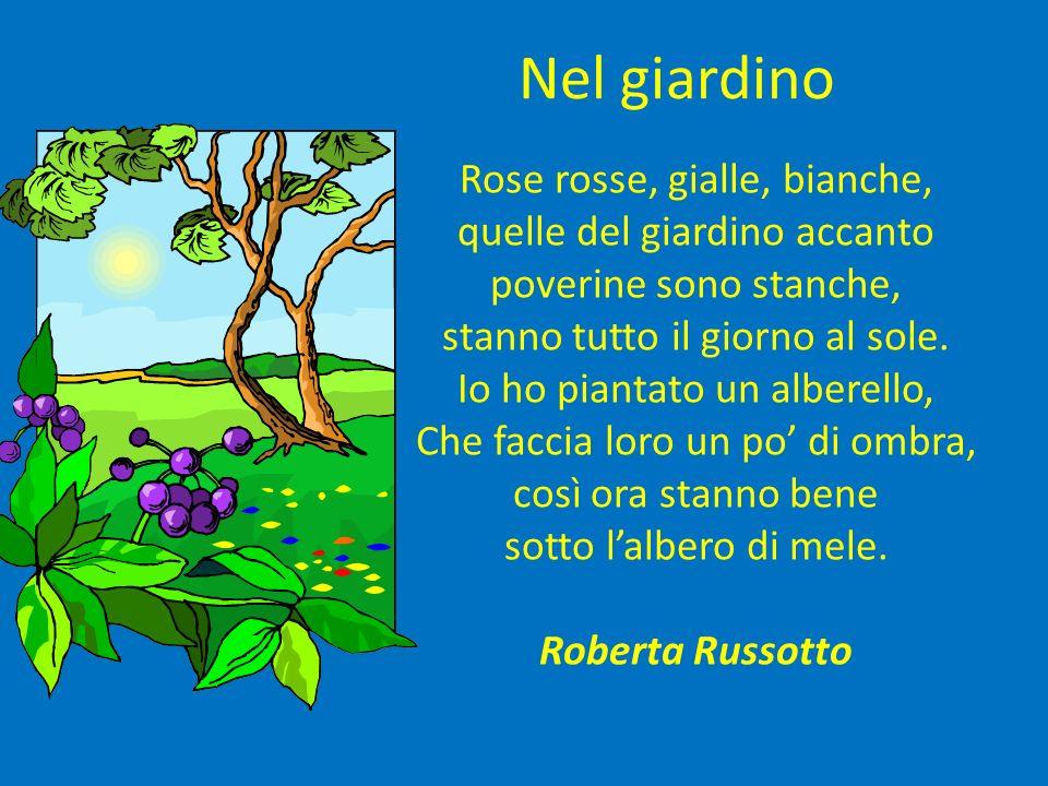 Nel giardino Rose rosse, gialle, bianche, quelle del giardino accanto poverine sono stanche, stanno tutto il giorno al sole. Io ho piantato un alberel