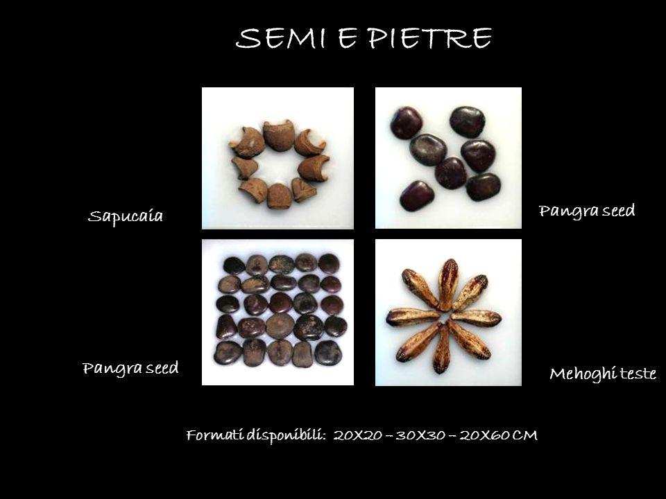Formati disponibili: 20X20 – 30X30 – 20X60 CM SEMI E PIETRE Pangra seed Sapucaia Mehoghi teste