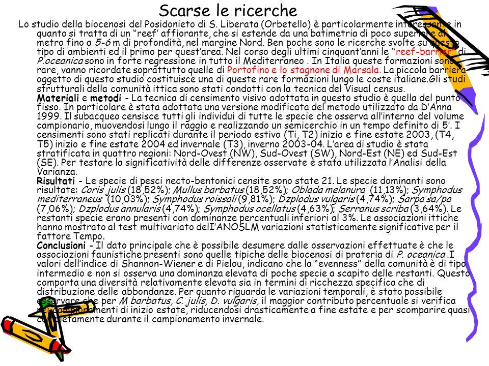 Scarse le ricerche Lo studio della biocenosi del Posidonieto di S.