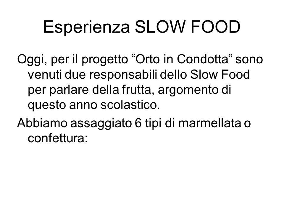 Esperienza SLOW FOOD Oggi, per il progetto Orto in Condotta sono venuti due responsabili dello Slow Food per parlare della frutta, argomento di questo anno scolastico.