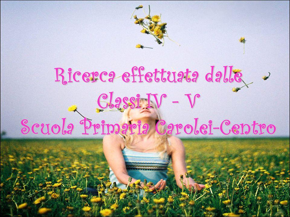 Ricerca effettuata dalle Classi IV - V Scuola Primaria Carolei-Centro