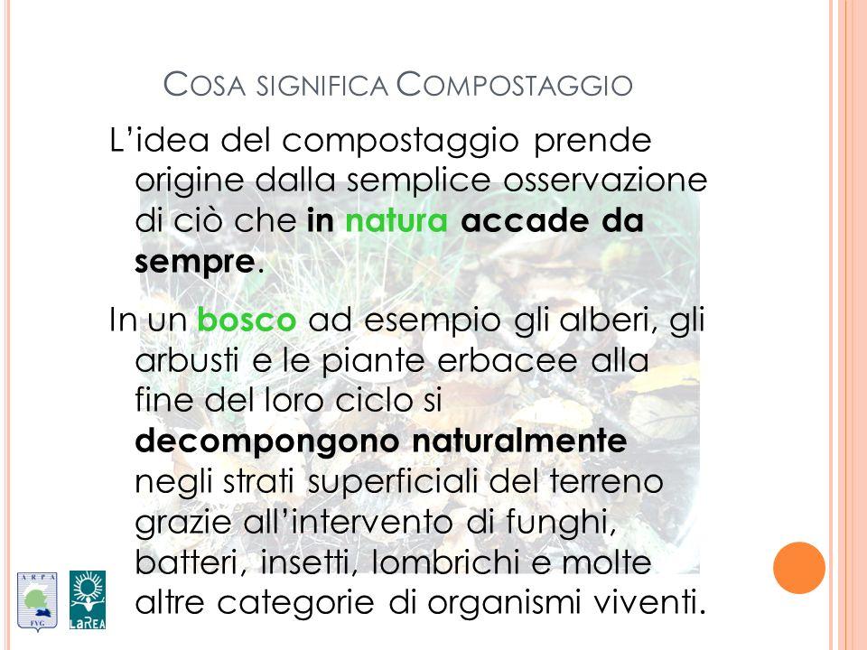 R IASSUMENDO compostaggio Gli elementi del compostaggio sono: rifiuto organico Il rifiuto organico: nutrimento per i microrganismi, deve contenere azoto e carbonio in quantità sufficiente ed equilibrata acqua Lacqua: indispensabile per la vita dei microrganismi ossigeno Laria e lossigeno: importanti per la respirazione microbica