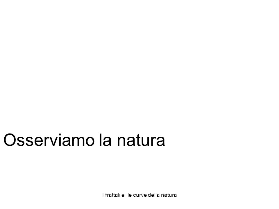 I frattali e le curve della natura Osserviamo la natura