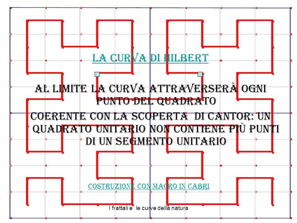 I frattali e le curve della natura La curva di Hilbert Al limite la curva attraverserà ogni punto del quadrato Coerente con la scoperta di Cantor: un quadrato unitario non contiene più punti di un segmento unitario Costruzione con macro in Cabri