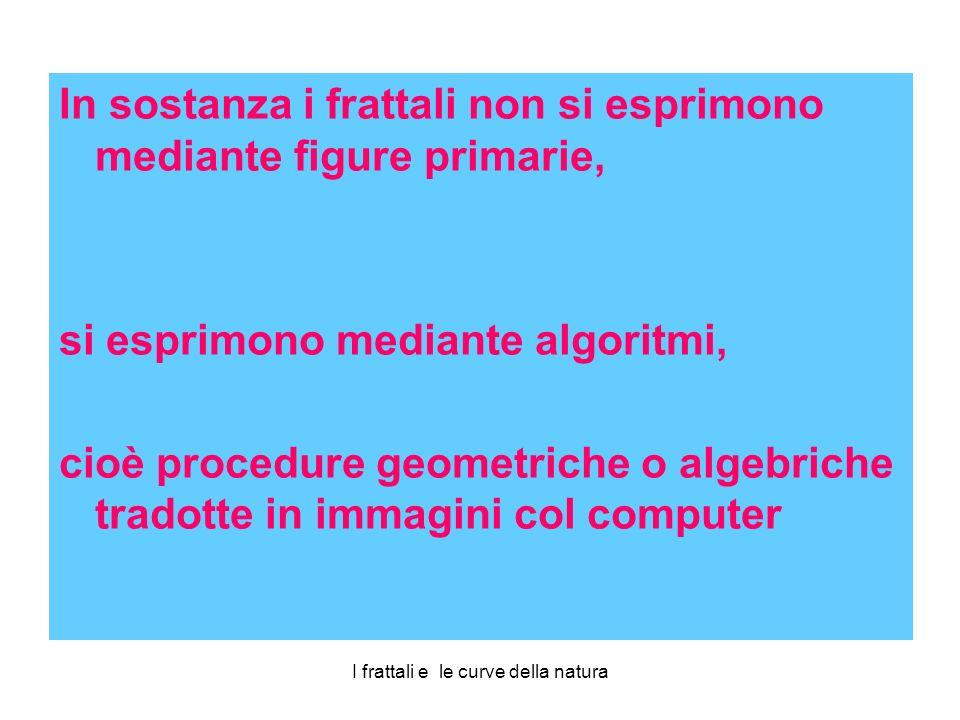 In sostanza i frattali non si esprimono mediante figure primarie, si esprimono mediante algoritmi, cioè procedure geometriche o algebriche tradotte in immagini col computer
