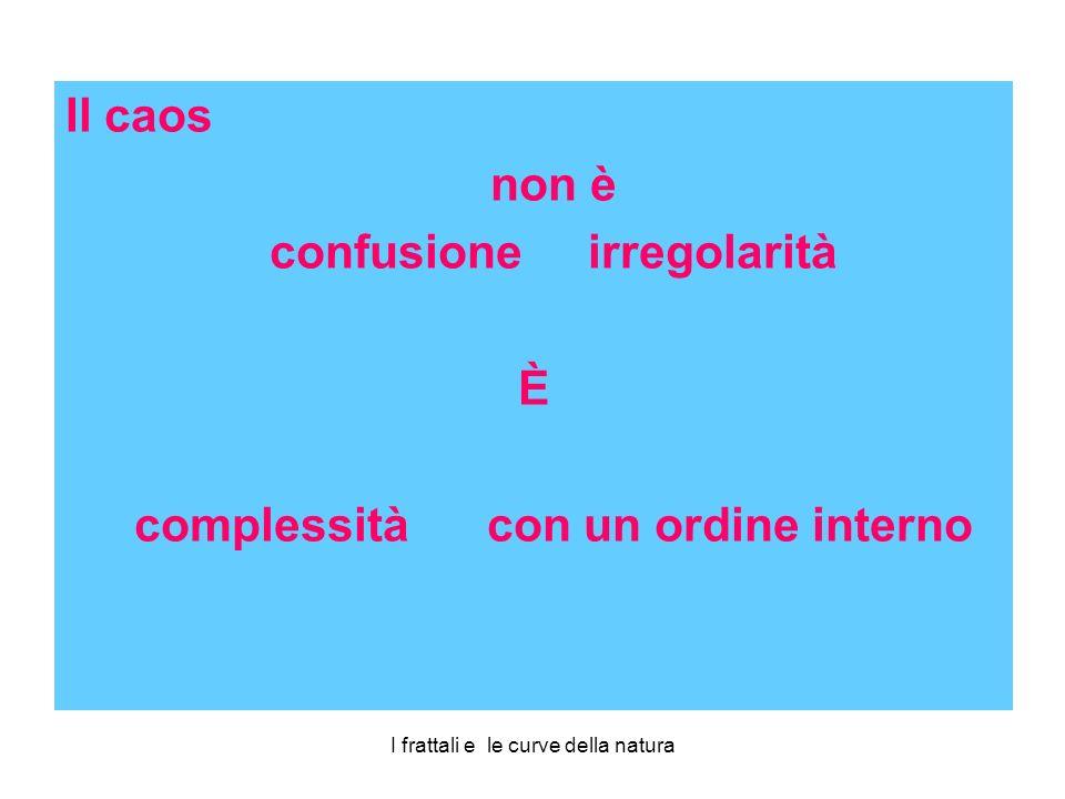 Il caos non è confusione irregolarità È complessità con un ordine interno
