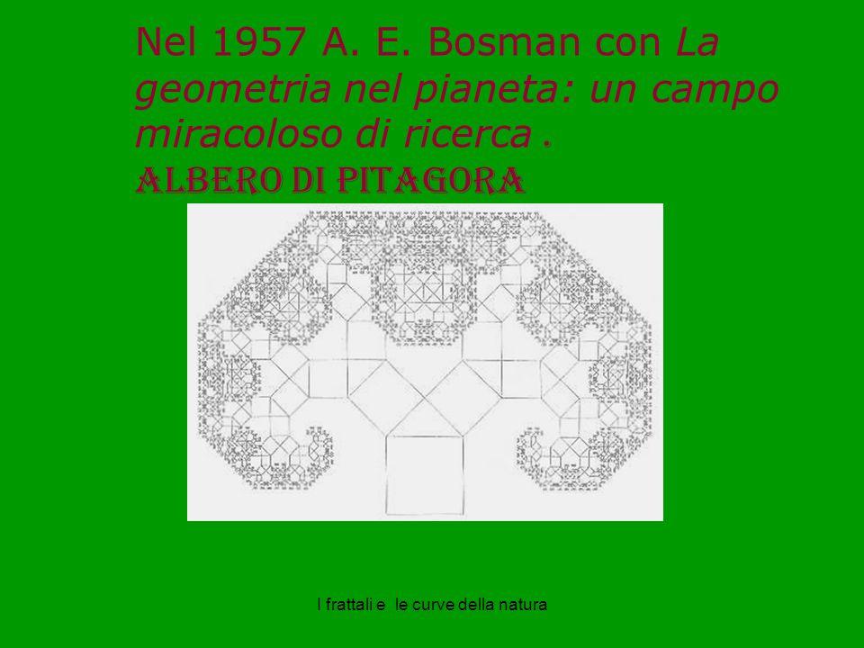 Nel 1957 A.E. Bosman con La geometria nel pianeta: un campo miracoloso di ricerca.