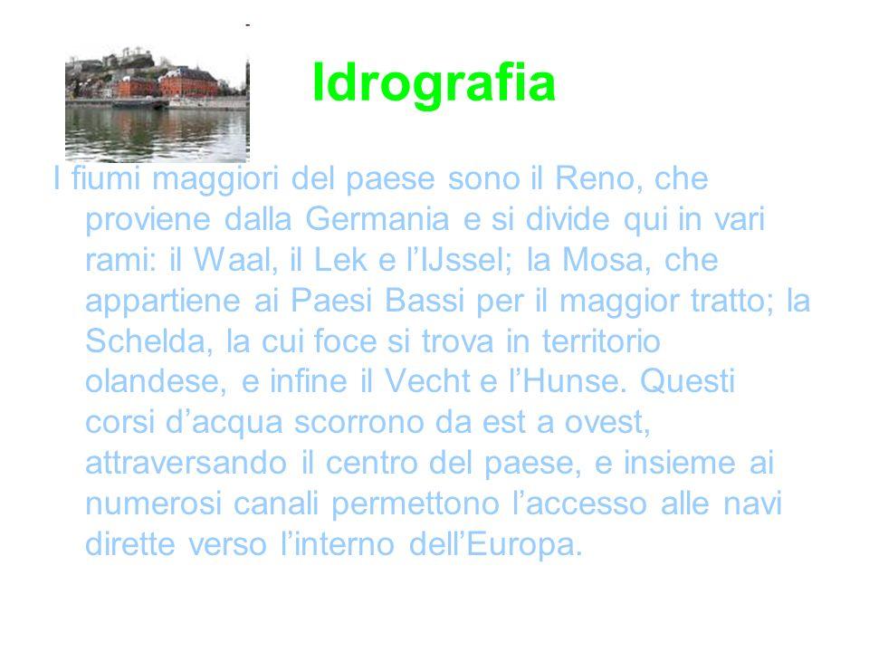 Idrografia I fiumi maggiori del paese sono il Reno, che proviene dalla Germania e si divide qui in vari rami: il Waal, il Lek e lIJssel; la Mosa, che