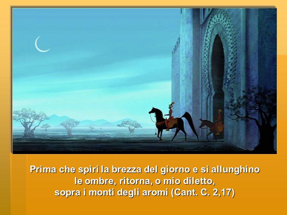 Prima che spiri la brezza del giorno e si allunghino le ombre, ritorna, o mio diletto, sopra i monti degli aromi (Cant. C. 2,17)