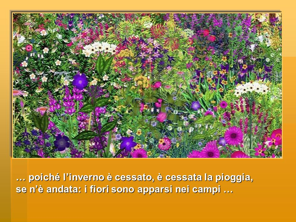 … poiché linverno è cessato, è cessata la pioggia, se nè andata: i fiori sono apparsi nei campi …