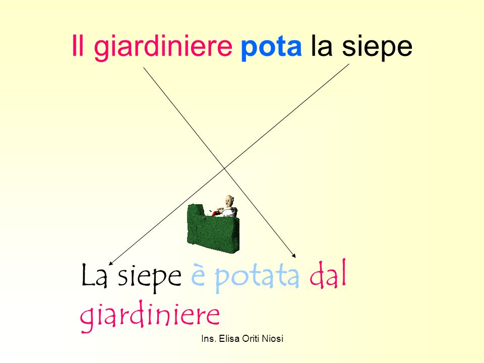 Ins. Elisa Oriti Niosi Il giardiniere pota la siepe La siepe è potata dal giardiniere