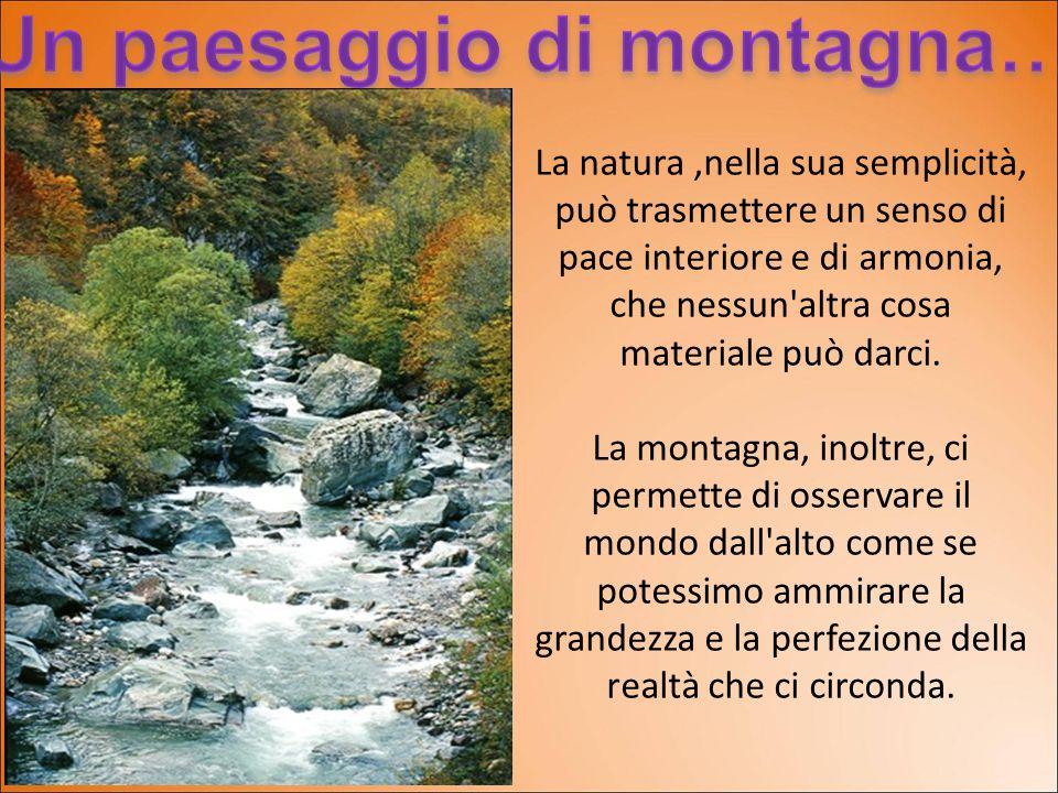 La natura,nella sua semplicità, può trasmettere un senso di pace interiore e di armonia, che nessun'altra cosa materiale può darci. La montagna, inolt