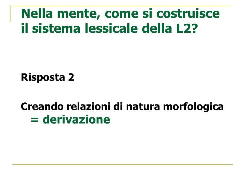 Nella mente, come si costruisce il sistema lessicale della L2? Risposta 2 Creando relazioni di natura morfologica = derivazione