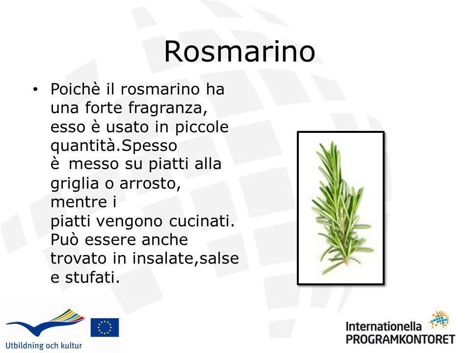 Rosmarino Poichè il rosmarino ha una forte fragranza, esso è usato in piccole quantità.Spesso è messo su piatti alla griglia o arrosto, mentre i piatt