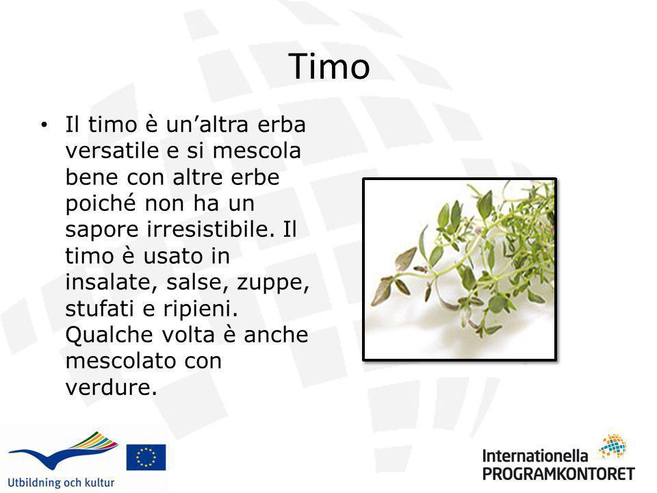 Timo Il timo è unaltra erba versatile e si mescola bene con altre erbe poiché non ha un sapore irresistibile. Il timo è usato in insalate, salse, zupp