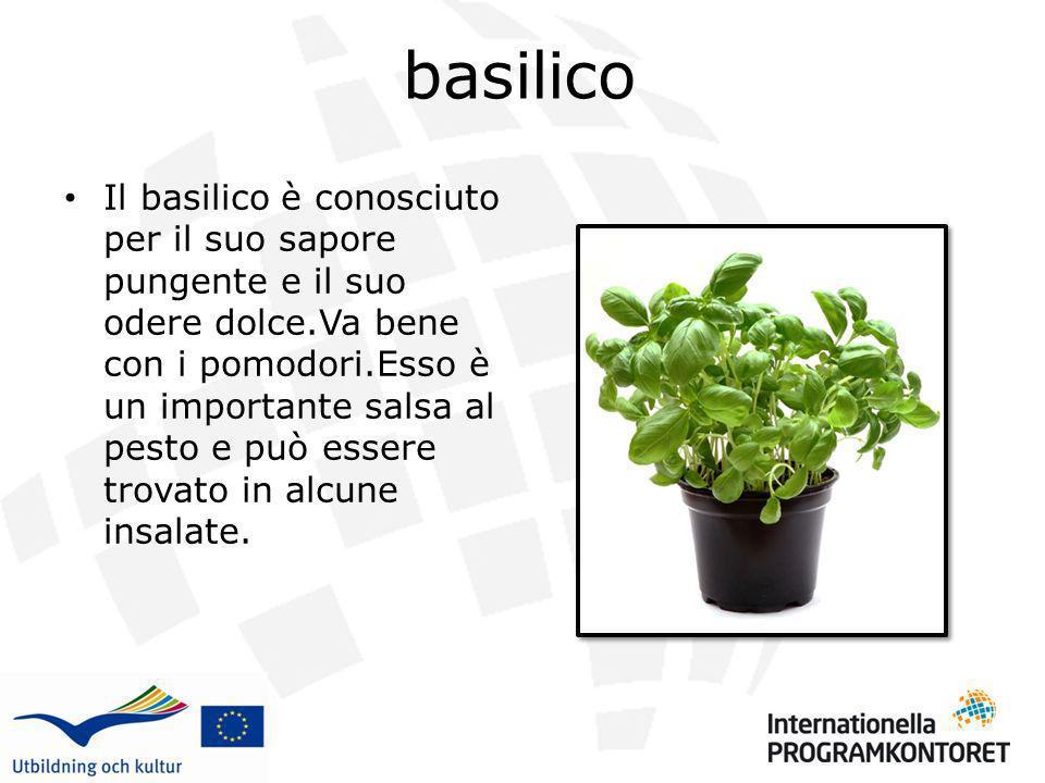 basilico Il basilico è conosciuto per il suo sapore pungente e il suo odere dolce.Va bene con i pomodori.Esso è un importante salsa al pesto e può ess