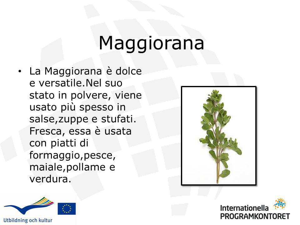 Maggiorana La Maggiorana è dolce e versatile.Nel suo stato in polvere, viene usato più spesso in salse,zuppe e stufati. Fresca, essa è usata con piatt