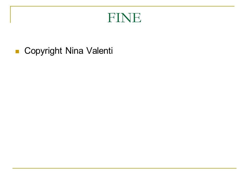FINE Copyright Nina Valenti