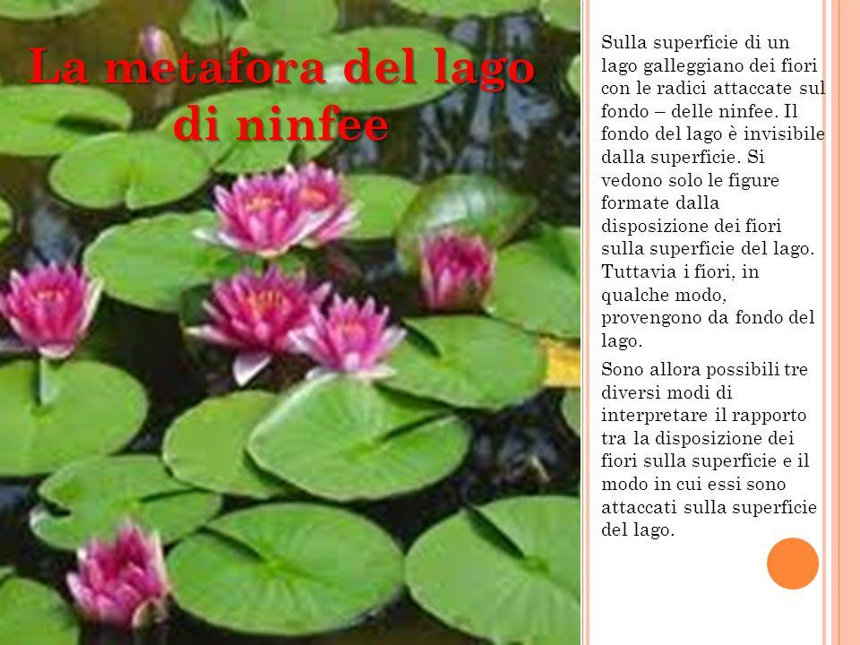 Sulla superficie di un lago galleggiano dei fiori con le radici attaccate sul fondo – delle ninfee. Il fondo del lago è invisibile dalla superficie. S