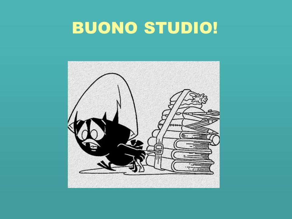 BUONO STUDIO!