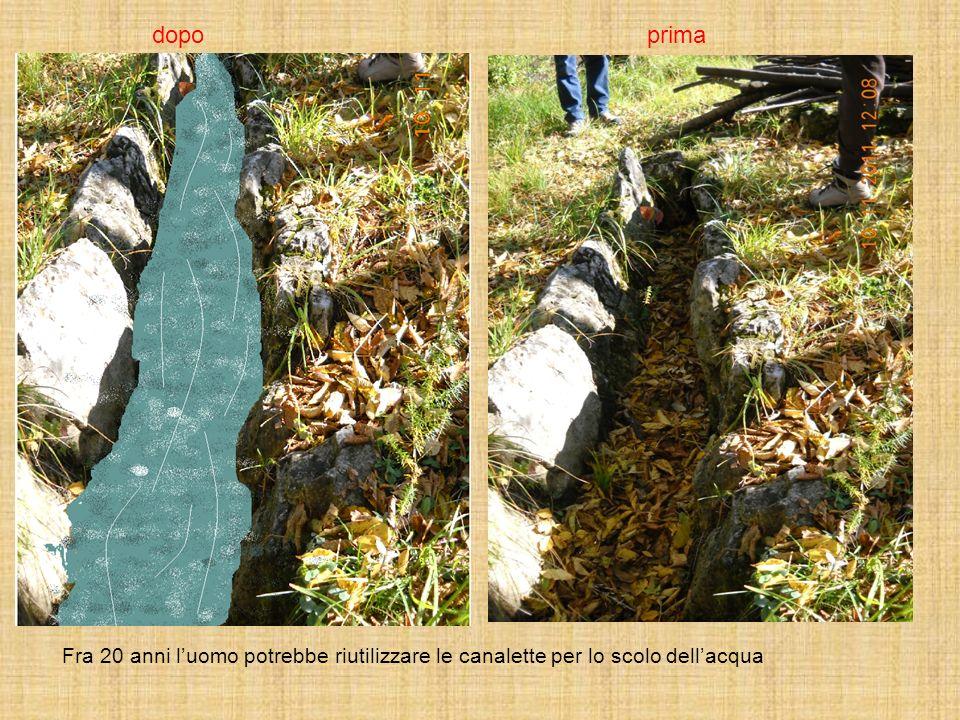 Fra 20 anni luomo potrebbe riutilizzare le canalette per lo scolo dellacqua primadopo