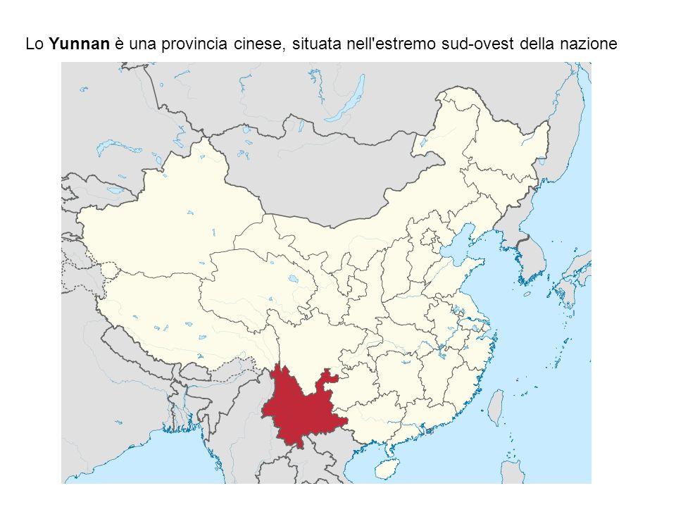 Lo Yunnan è una provincia cinese, situata nell'estremo sud-ovest della nazione