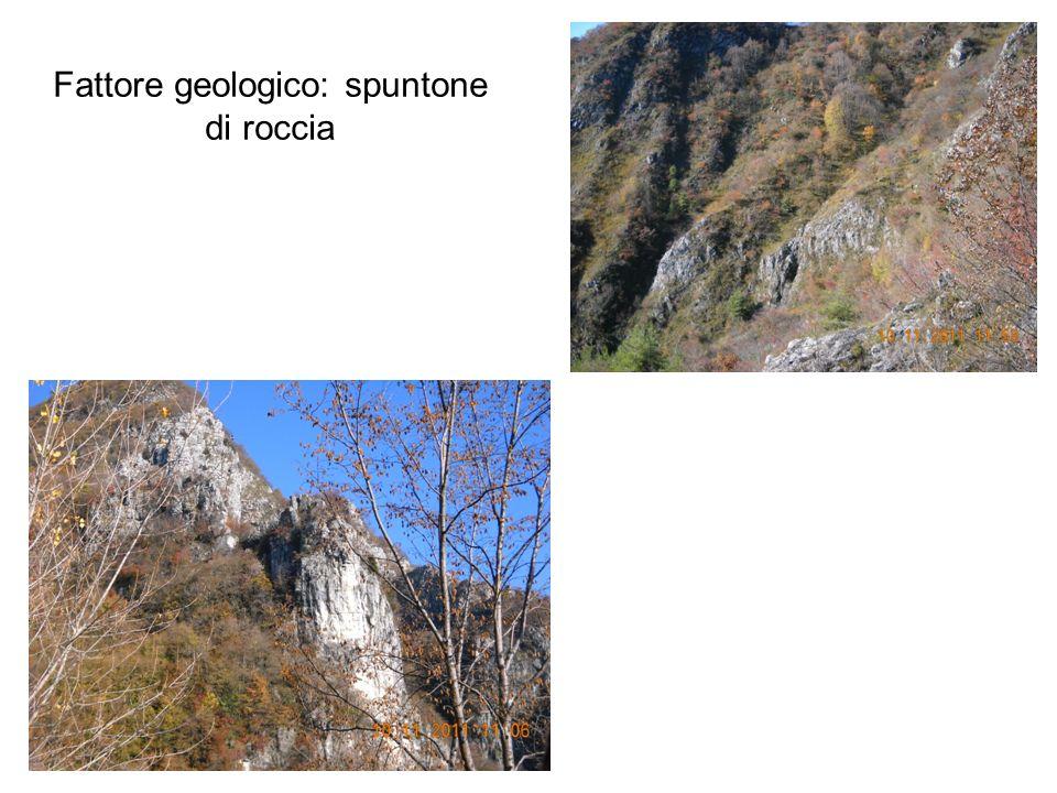 Fattore geologico: spuntone di roccia