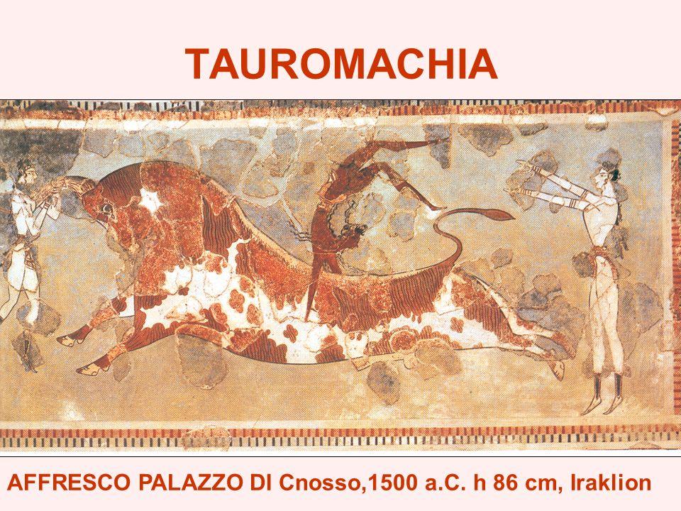 TAUROMACHIA AFFRESCO PALAZZO DI Cnosso,1500 a.C. h 86 cm, Iraklion