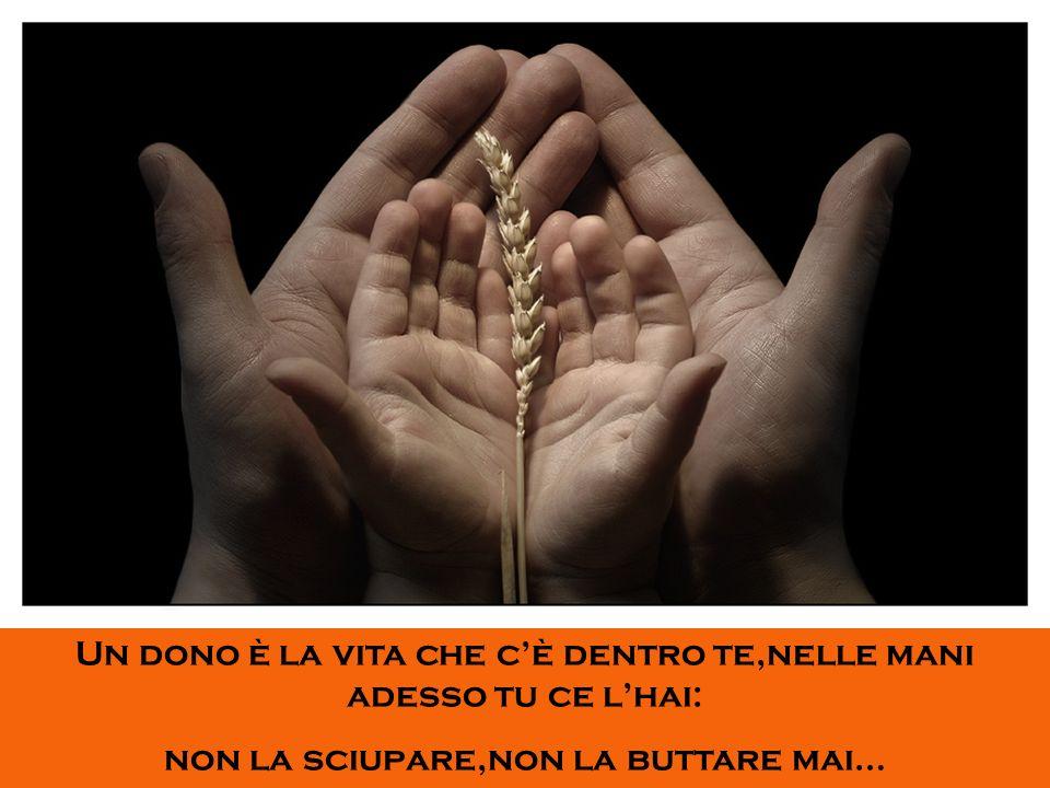 Un dono è la vita che cè dentro te,nelle mani adesso tu ce lhai: non la sciupare,non la buttare mai…