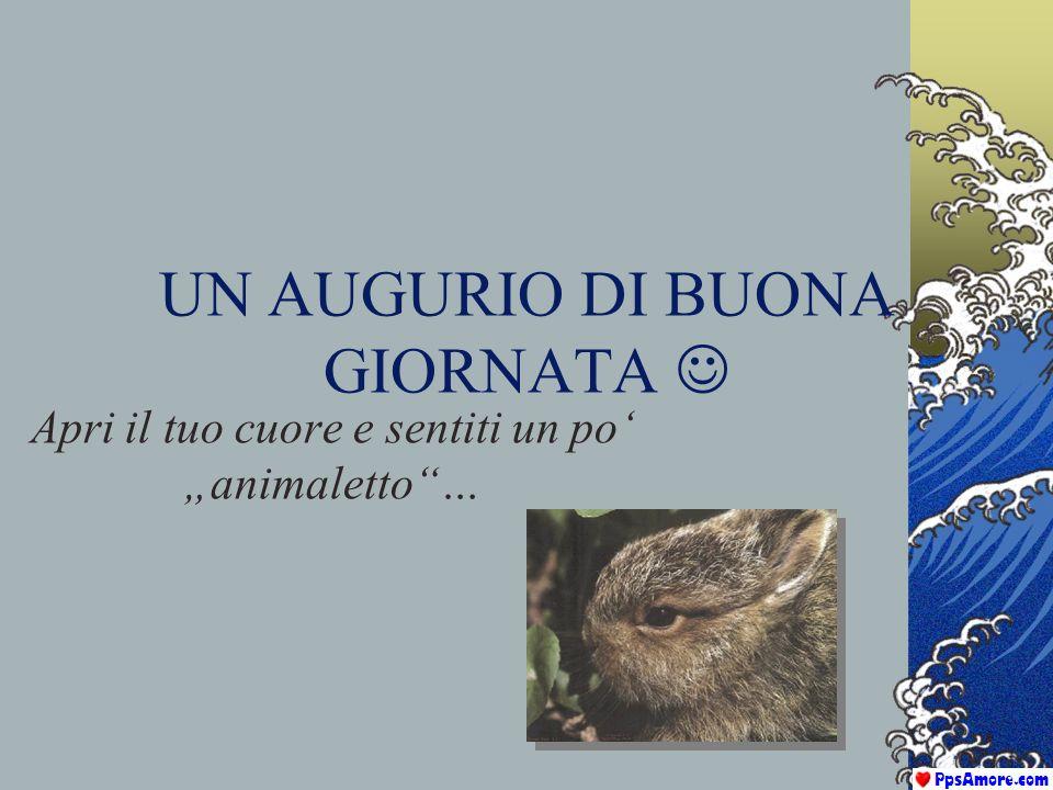 Questa presentazione è stata distribuita da: www.PpsAmore.com I temi trattati dal nostro sito sono lamore, lamicizia, la poesia, la natura, larte, con immagini di animali, fiori e paesaggi da sogno.