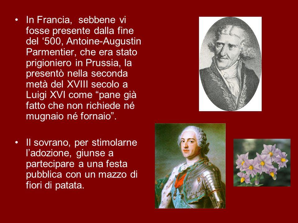 In Francia, sebbene vi fosse presente dalla fine del 500, Antoine-Augustin Parmentier, che era stato prigioniero in Prussia, la presentò nella seconda