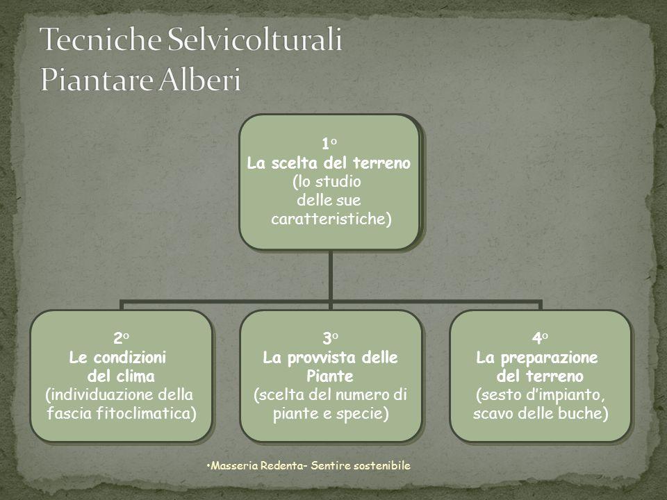 Il territorio italiano lo individuiamo in sei fasce climatiche di rilevanza botanica (zone fitoclimatiche).