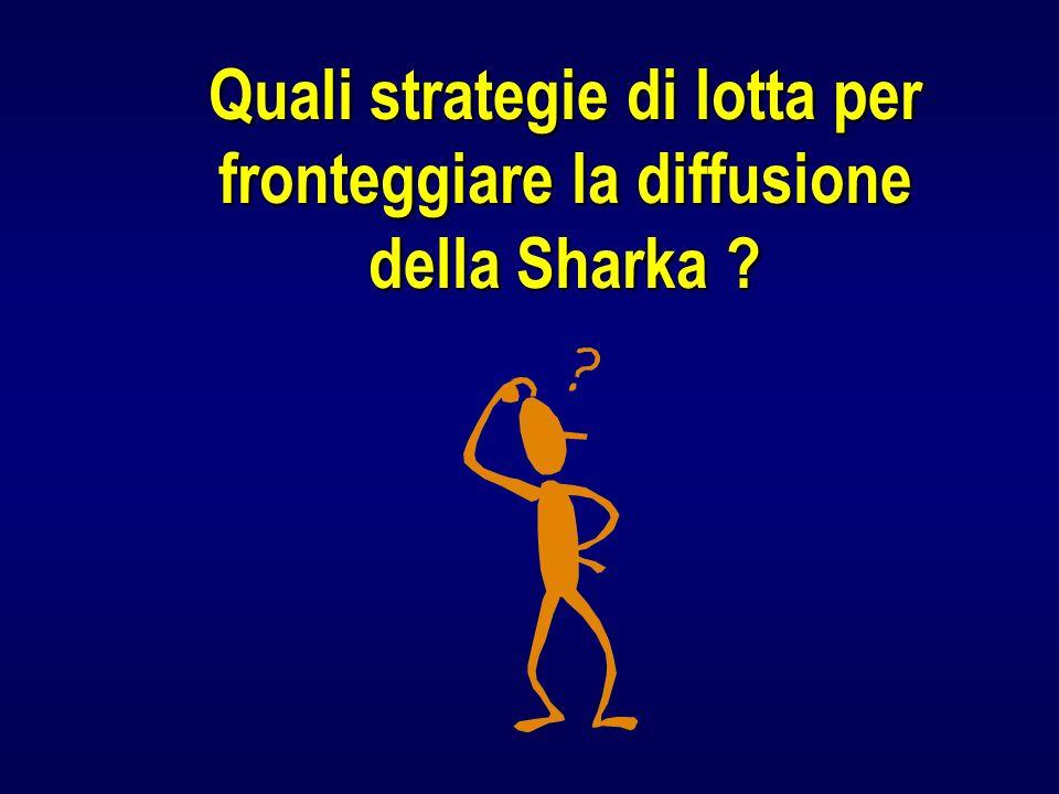 Quali strategie di lotta per fronteggiare la diffusione della Sharka ?