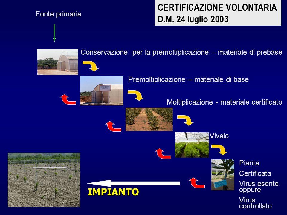 Fonte primaria Conservazione per la premoltiplicazione – materiale di prebase Premoltiplicazione – materiale di base Moltiplicazione - materiale certi