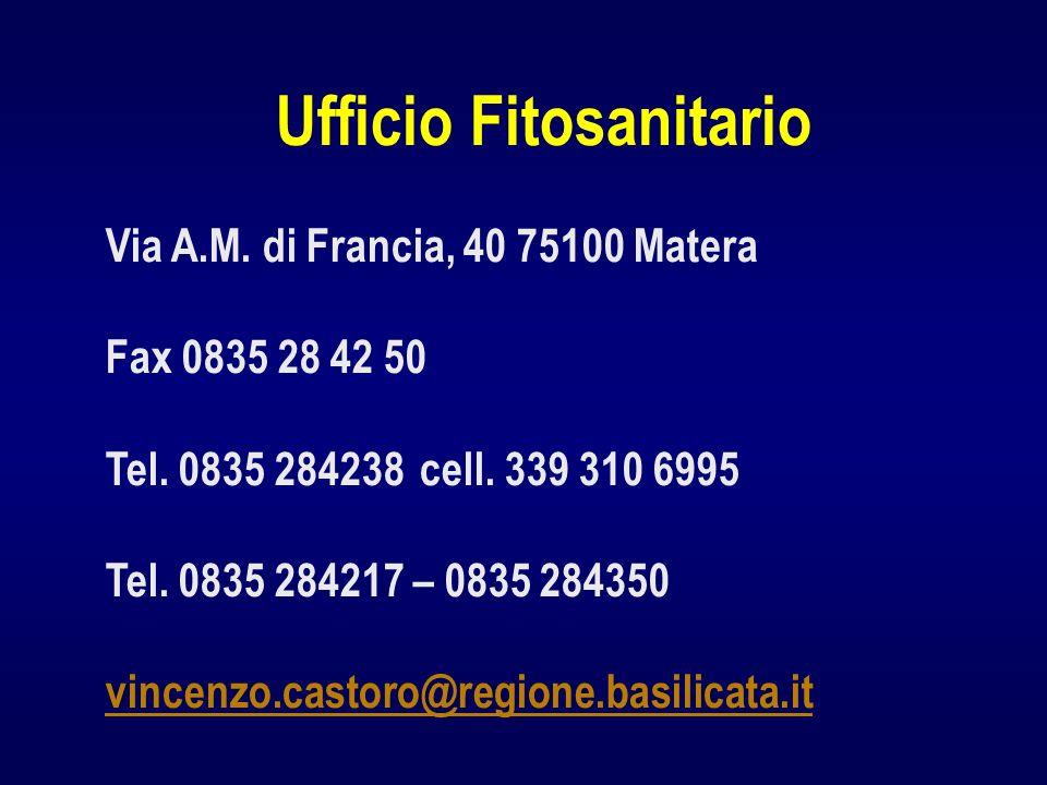 Ufficio Fitosanitario Via A.M. di Francia, 40 75100 Matera Fax 0835 28 42 50 Tel. 0835 284238 cell. 339 310 6995 Tel. 0835 284217 – 0835 284350 vincen