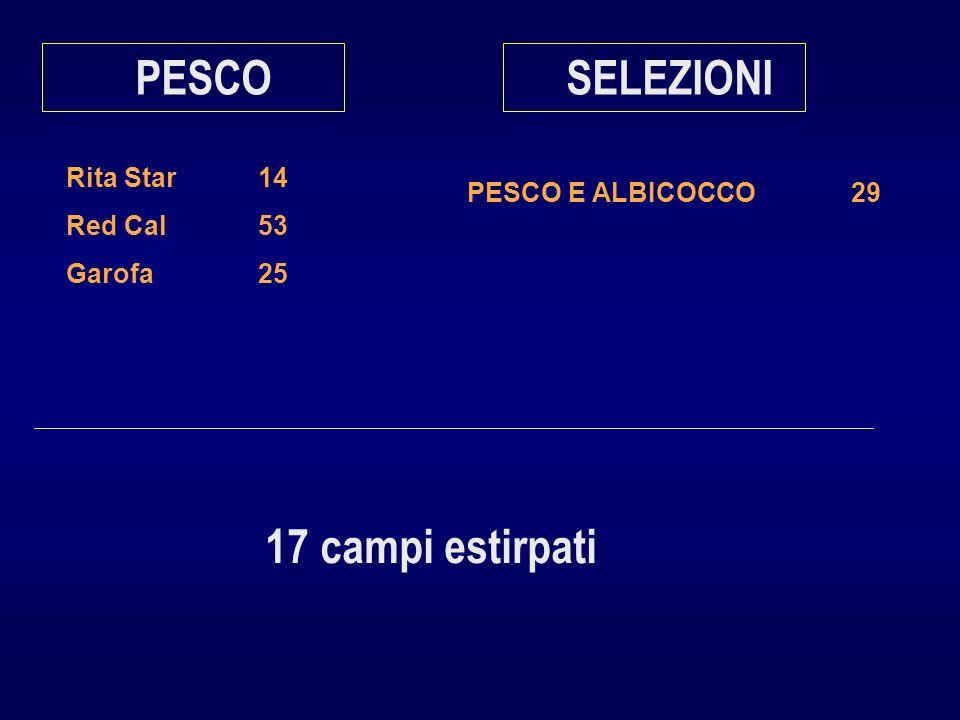 Rita Star14 Red Cal53 Garofa25 PESCO PESCO E ALBICOCCO29 SELEZIONI 17 campi estirpati